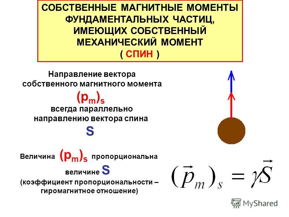 СОБСТВЕННЫЕ МАГНИТНЫЕ МОМЕНТЫ ФУНДАМЕНТАЛЬНЫХ ЧАСТИЦ, ИМЕЮЩИХ СОБСТВЕННЫЙ МЕХАНИЧЕСКИЙ МОМЕНТ ( СПИН ) Направление вектора собственного магнитного момента (p m ) s всегда параллельно направлению вектора спина S Величина (p m ) s пропорциональна велич