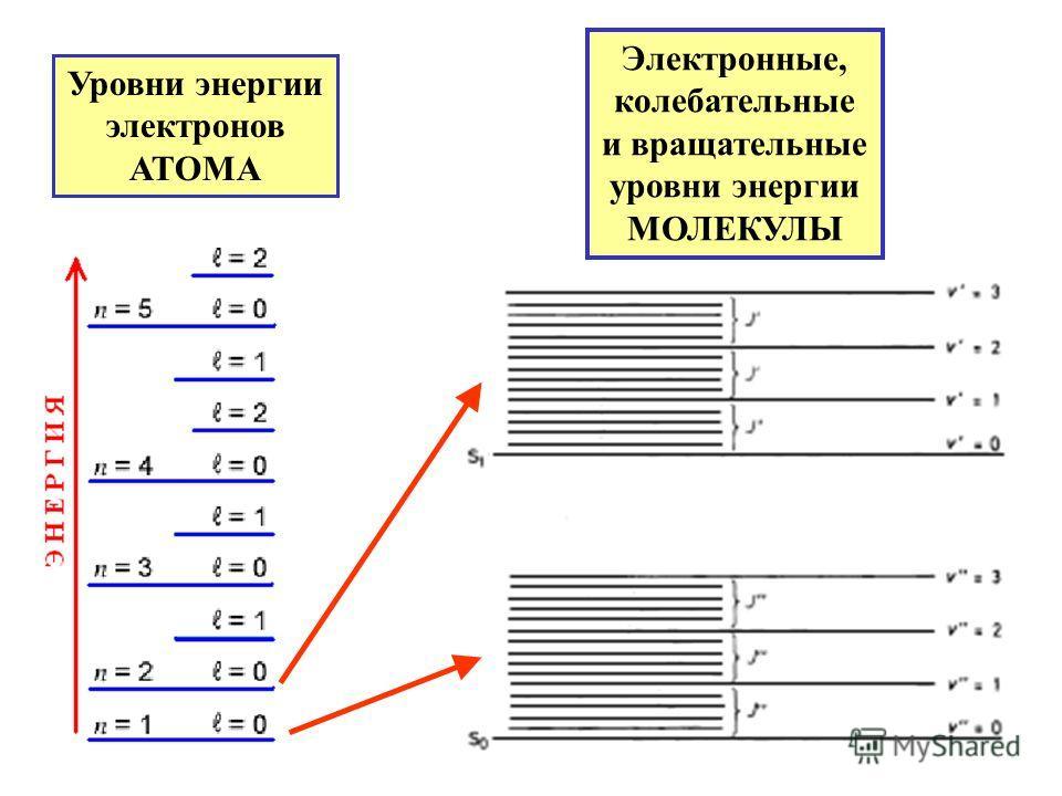 Уровни энергии электронов АТОМА Электронные, колебательные и вращательные уровни энергии МОЛЕКУЛЫ
