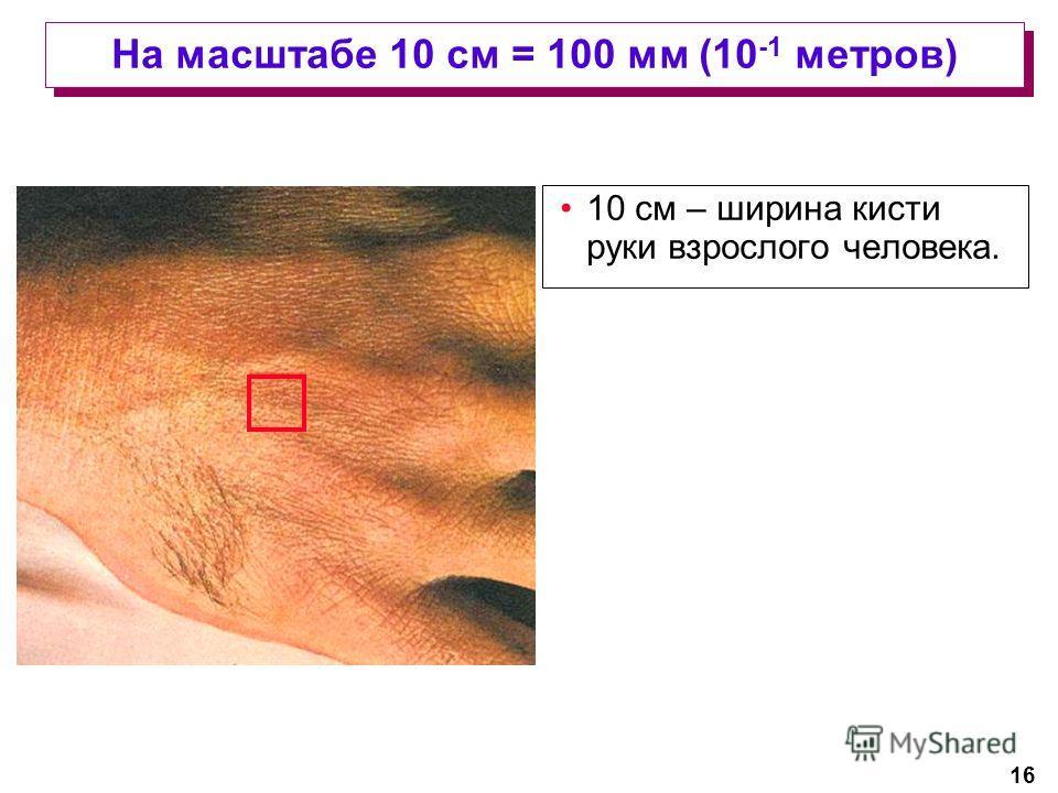 16 На масштабе 10 см = 100 мм (10 -1 метров) 10 см – ширина кисти руки взрослого человека.