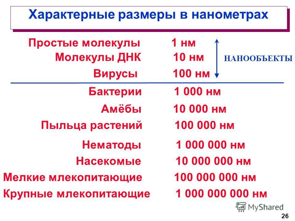 26 Характерные размеры в нанометрах Молекулы ДНК 10 нм Вирусы 100 нм Бактерии 1 000 нм Амёбы 10 000 нм Пыльца растений 100 000 нм Нематоды 1 000 000 нм Насекомые 10 000 000 нм Мелкие млекопитающие 100 000 000 нм Крупные млекопитающие 1 000 000 000 нм
