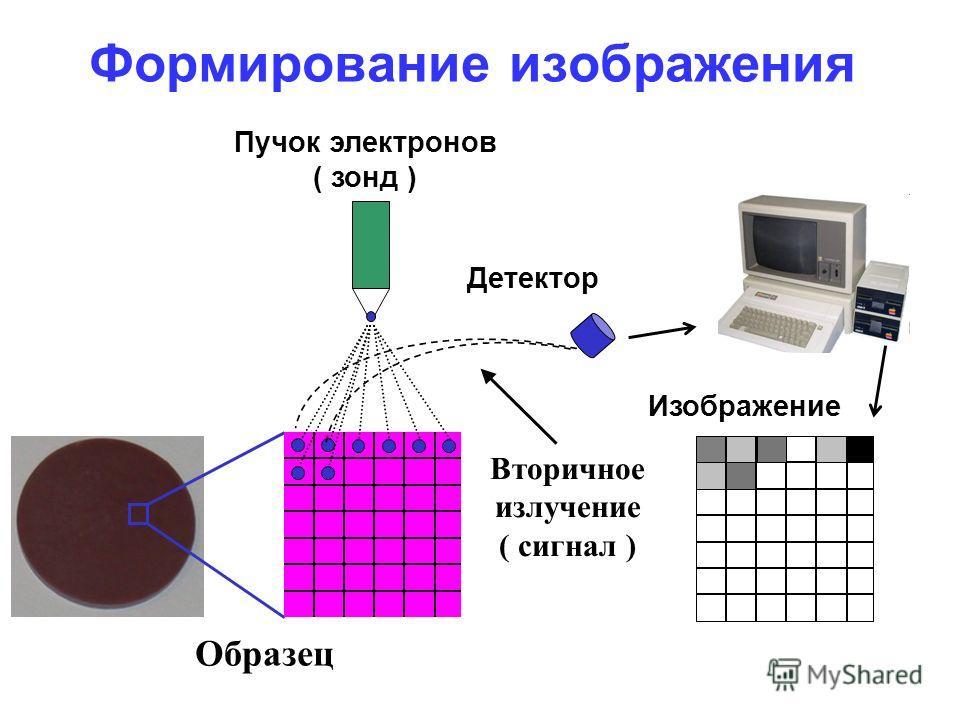 Формирование изображения Изображение Детектор Пучок электронов ( зонд ) Образец Вторичное излучение ( сигнал )
