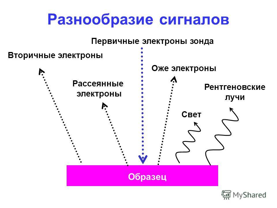 Разнообразие сигналов Первичные электроны зонда Вторичные электроны Рассеянные электроны Оже электроны Свет Рентгеновские лучи Образец