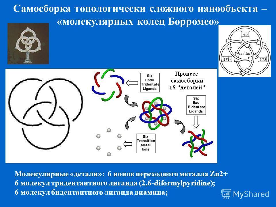 Самосборка топологически сложного нанообъекта – «молекулярных колец Борромео» Молекулярные «детали»: 6 ионов переходного металла Zn2+ 6 молекул тридентантного лиганда (2,6-diformylpyridine); 6 молекул бидентантного лиганда диамина;