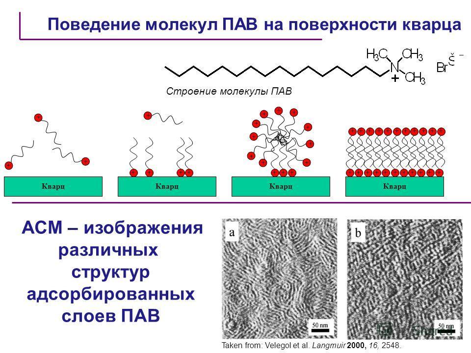 Поведение молекул ПАВ на поверхности кварца Taken from: Velegol et al. Langmuir 2000, 16, 2548. АСМ – изображения различных структур адсорбированных слоев ПАВ Кварц + + + + +++ + ++ ++ + ++ + + ++ + ++++++++++ ++ + + + + + + + + + + + Строение молеку