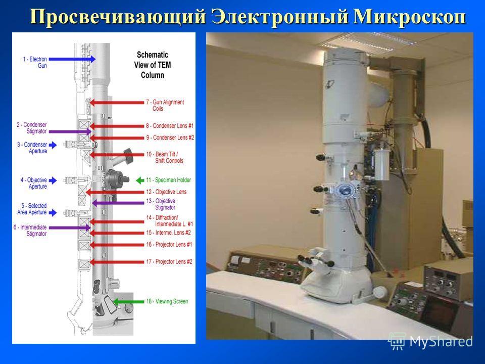 Просвечивающий Электронный Микроскоп