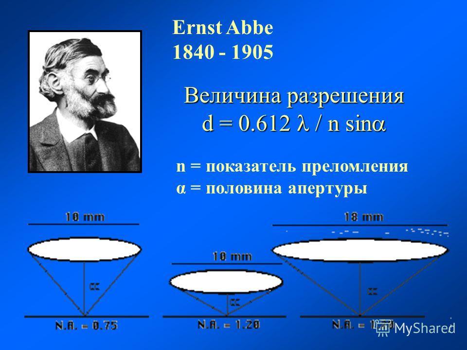 Ernst Abbe 1840 - 1905 Величина разрешения d = 0.612 / n sin d = 0.612 / n sin n = показатель преломления α = половина апертуры