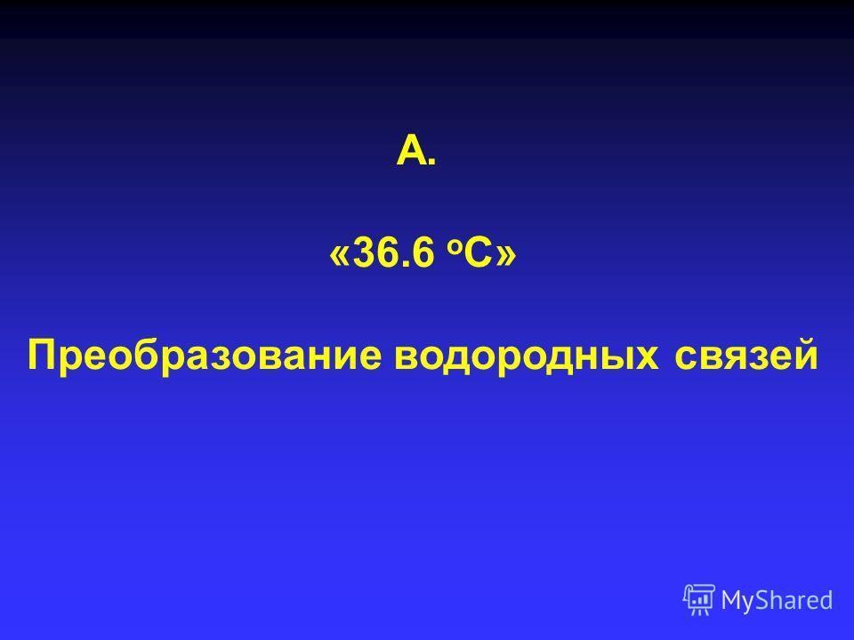 А. «36.6 о С» Преобразование водородных связей
