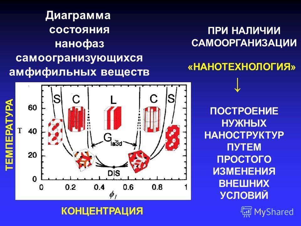 Диаграмма состояния нанофаз самоогранизующихся амфифильных веществ ТЕМПЕРАТУРА КОНЦЕНТРАЦИЯ ПРИ НАЛИЧИИ САМООРГАНИЗАЦИИ «НАНОТЕХНОЛОГИЯ» ПОСТРОЕНИЕ НУЖНЫХ НАНОСТРУКТУР ПУТЕМ ПРОСТОГО ИЗМЕНЕНИЯ ВНЕШНИХ УСЛОВИЙ