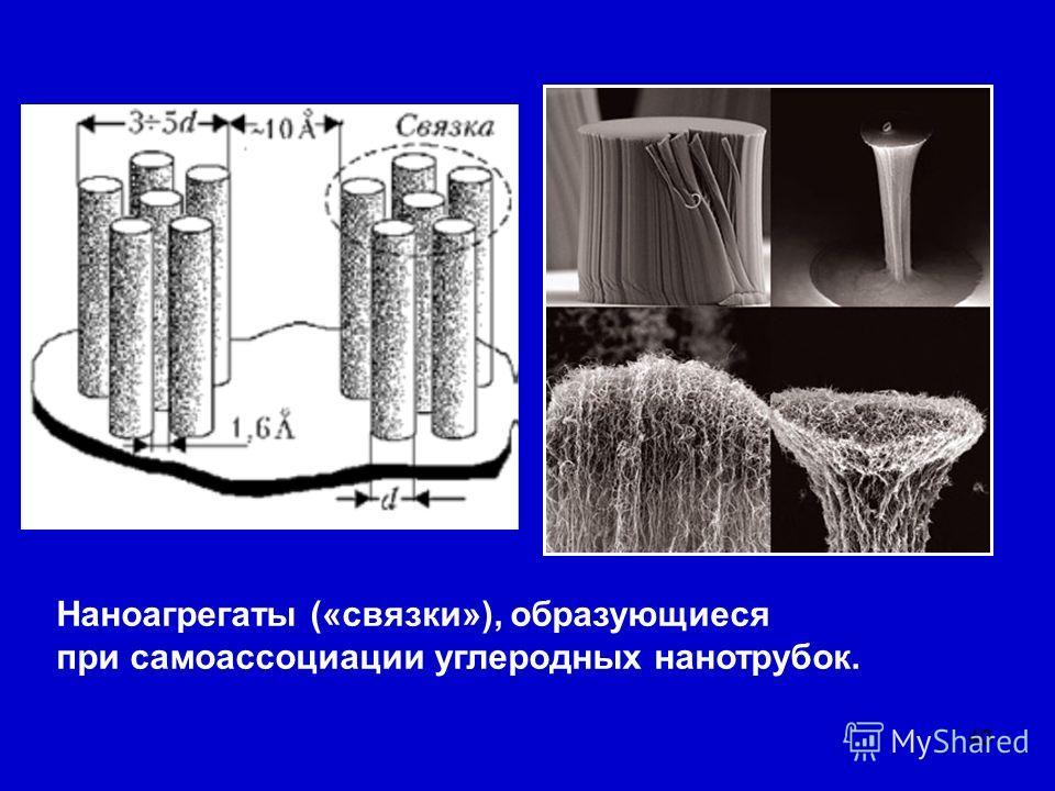 40 Наноагрегаты («связки»), образующиеся при самоассоциации углеродных нанотрубок.