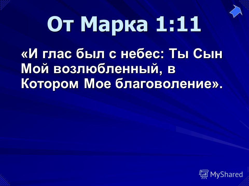 «И глас был с небес: Ты Сын Мой возлюбленный, в Котором Мое благоволение». От Марка 1:11