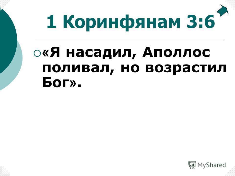 « Я насадил, Аполлос поливал, но возрастил Бог ». 1 Коринфянам 3:6