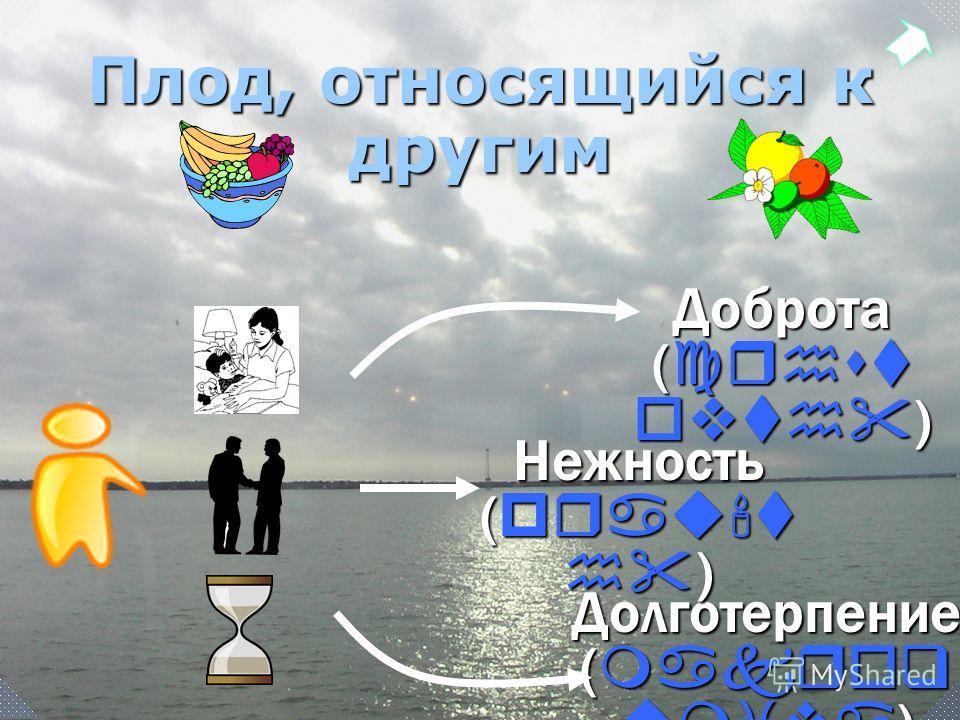 Долготерпение ( makroq umiva ) Плод, относящийся к другим Доброта ( crhst ovth ) Нежность ( prau't h )