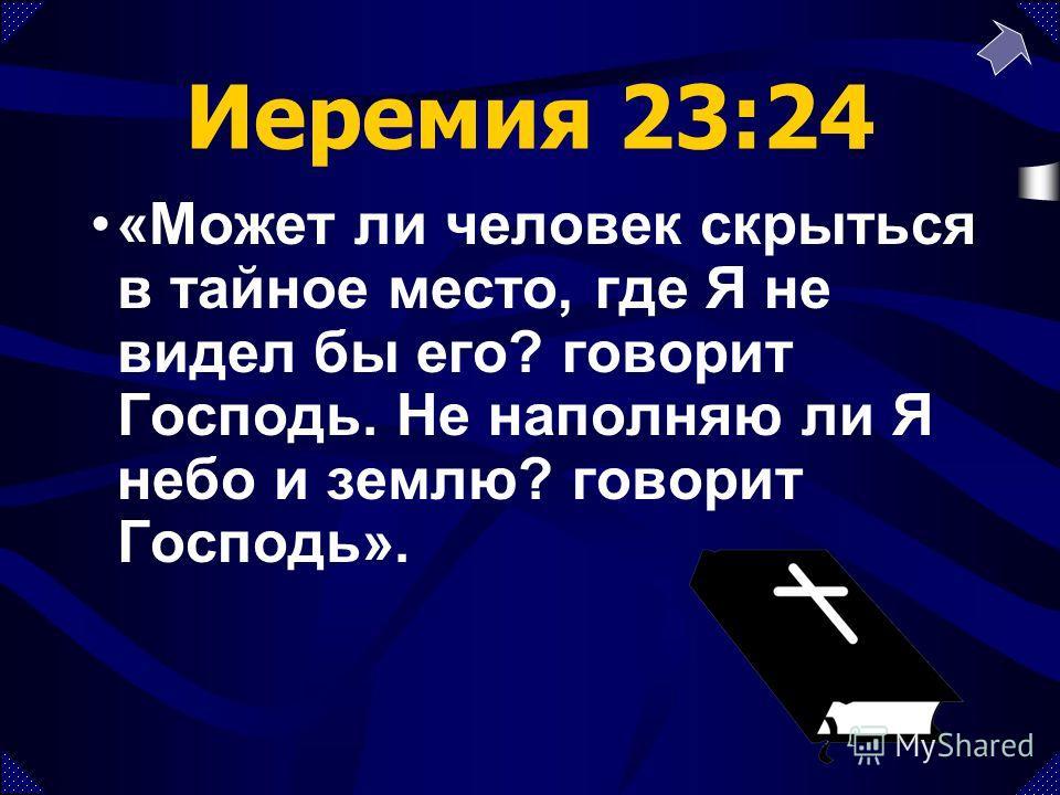 Иеремия 23:24 «Может ли человек скрыться в тайное место, где Я не видел бы его? говорит Господь. Не наполняю ли Я небо и землю? говорит Господь».