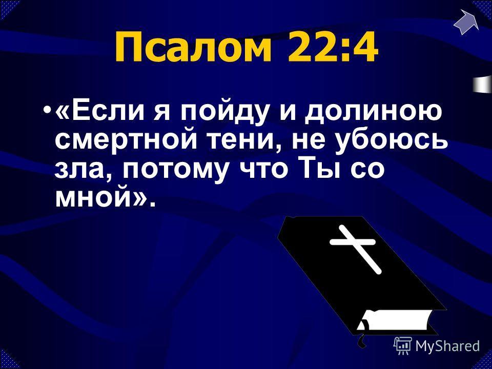 Псалом 22:4 «Если я пойду и долиною смертной тени, не убоюсь зла, потому что Ты со мной».