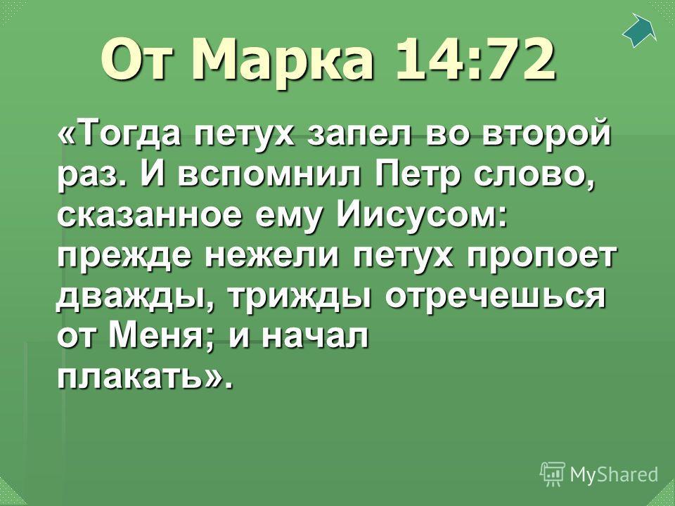 От Марка 14:72 «Тогда петух запел во второй раз. И вспомнил Петр слово, сказанное ему Иисусом: прежде нежели петух пропоет дважды, трижды отречешься от Меня; и начал плакать».