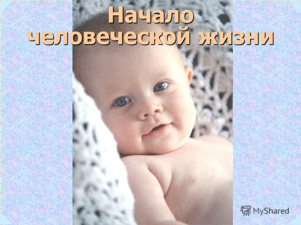 Начало человеческой жизни