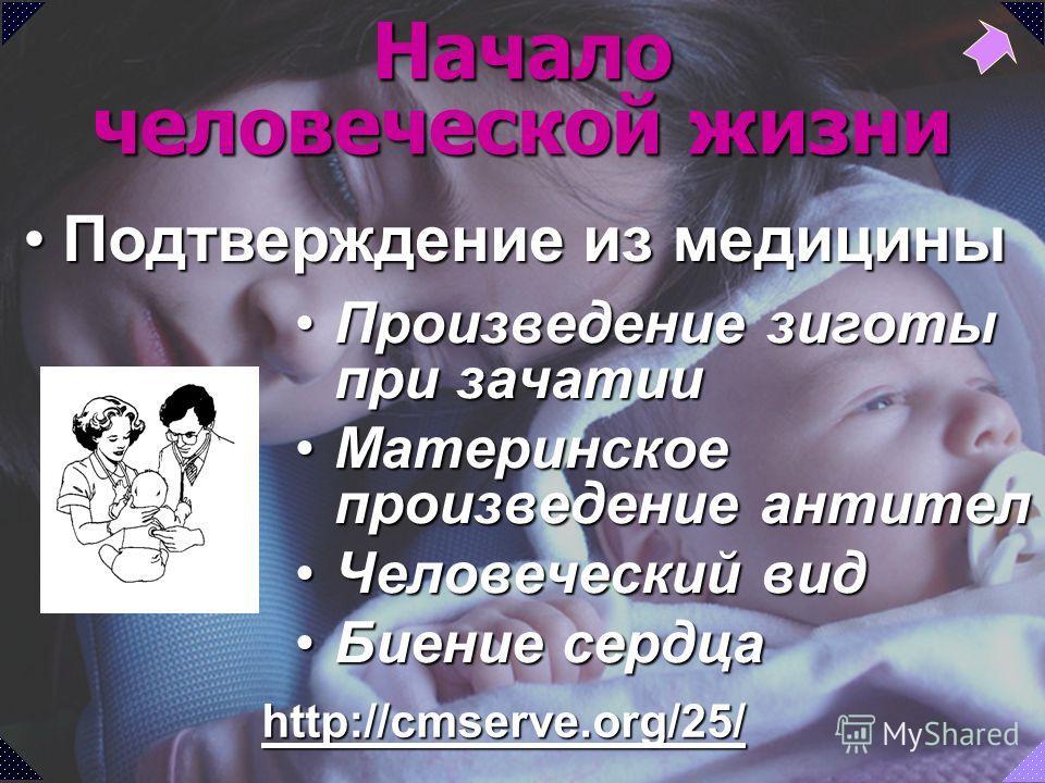 http://cmserve.org/25/ Начало человеческой жизни Произведение зиготы при зачатииПроизведение зиготы при зачатии Материнское произведение антителМатеринское произведение антител Человеческий видЧеловеческий вид Биение сердцаБиение сердца Подтверждение