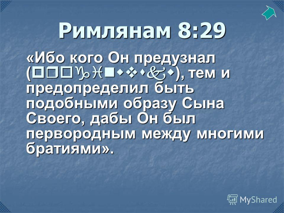 Римлянам 8:29 «Ибо кого Он предузнал (proginwvskw), тем и предопределил быть подобными образу Сына Своего, дабы Он был первородным между многими братиями».