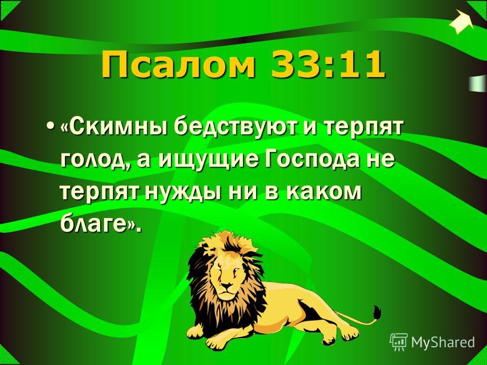 Псалом 33:11 «Скимны бедствуют и терпят голод, а ищущие Господа не терпят нужды ни в каком благе».«Скимны бедствуют и терпят голод, а ищущие Господа не терпят нужды ни в каком благе».