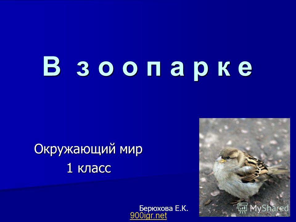 В з о о п а р к е Окружающий мир 1 класс Берюхова Е.К. 900igr.net