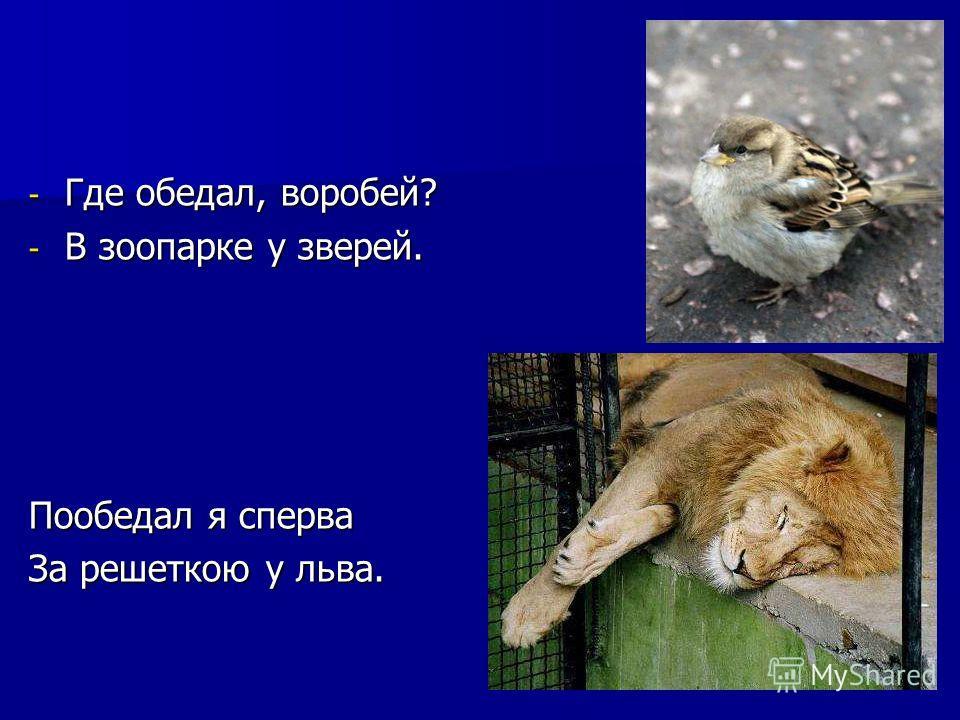 - Где обедал, воробей? - В зоопарке у зверей. Пообедал я сперва За решеткою у льва. Где обедал, воробей? В зоопарке у зверей. Пообедал я сперва за решеткою у льва.