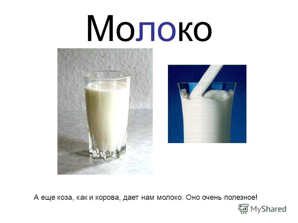 Молоко А еще коза, как и корова, дает нам молоко. Оно очень полезное!