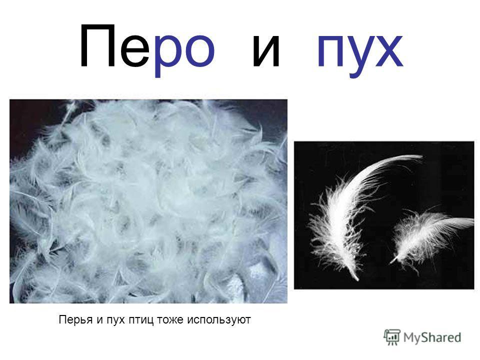 Перо и пух Перья и пух птиц тоже используют