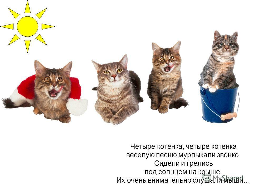 Пушистые стихи Татьяна Рождественская 900igr.net