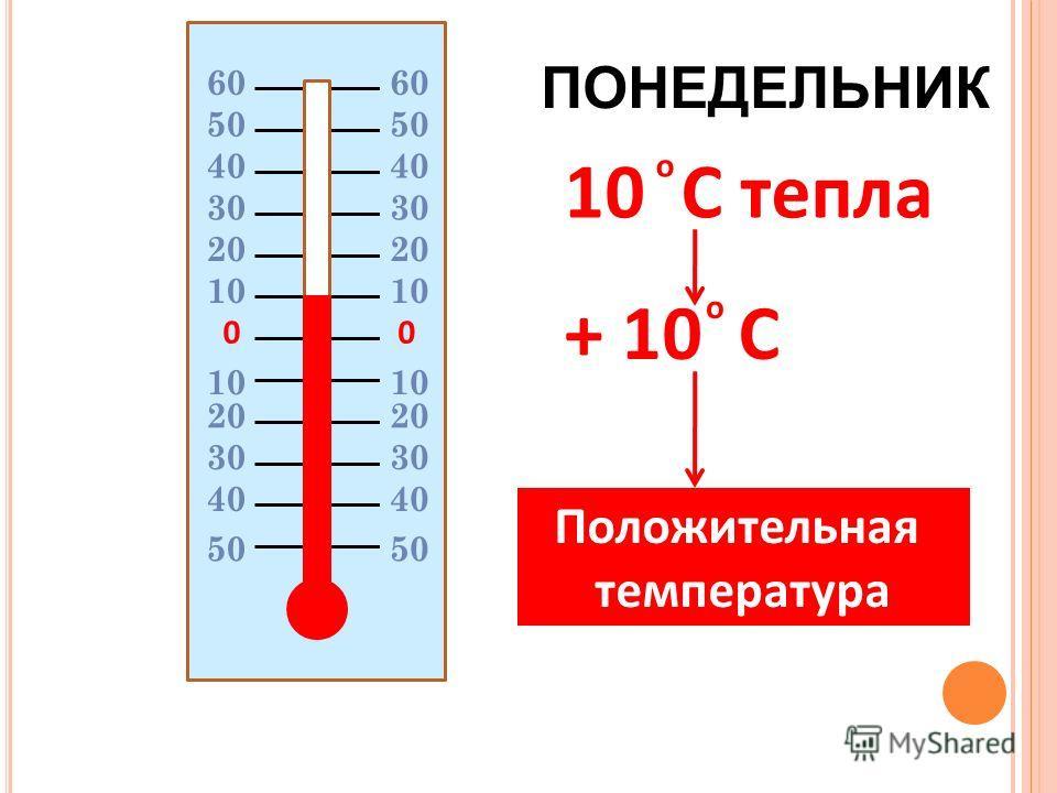 00 20 10 20 30 40 50 10 C тепла + 10 C о о Положительная температура 60606060 50 ПОНЕДЕЛЬНИК