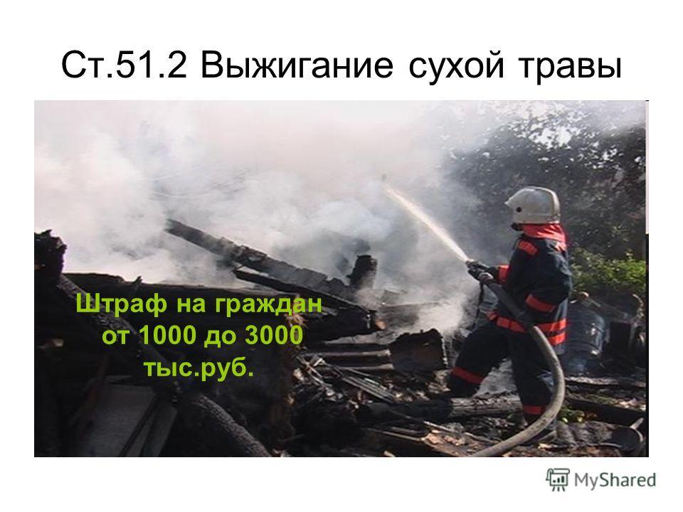 Ст.51.2 Выжигание сухой травы Штраф на граждан от 1000 до 3000 тыс.руб.