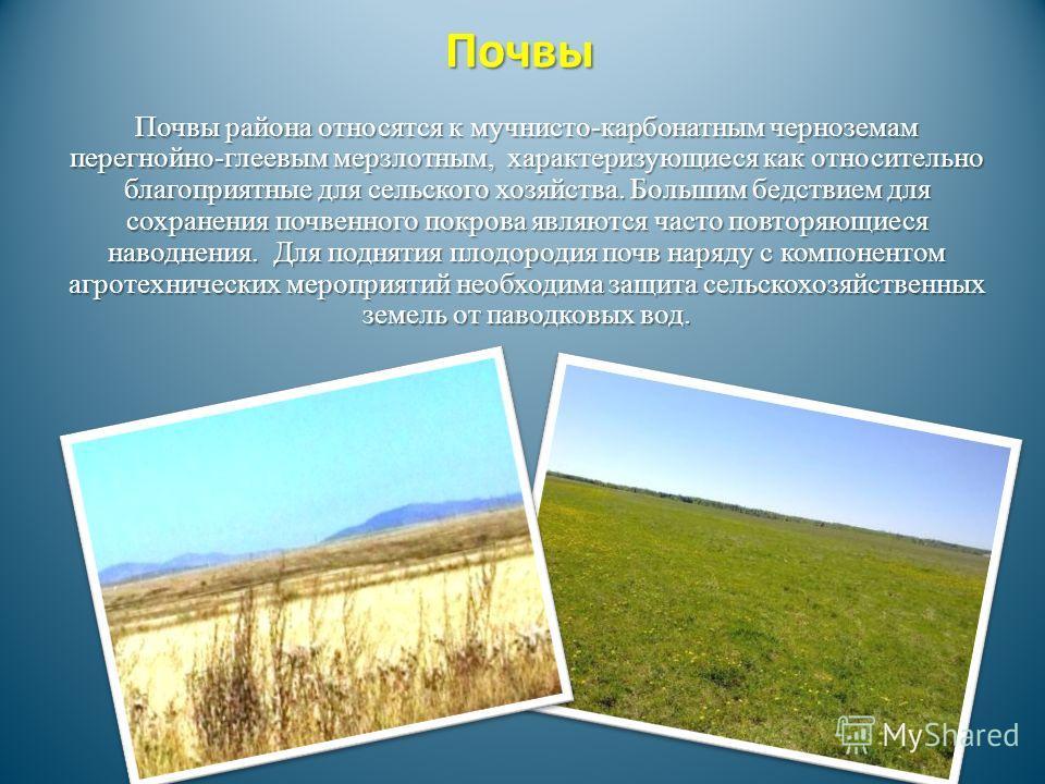 Почвы Почвы района относятся к мучнисто-карбонатным черноземам перегнойно-глеевым мерзлотным, характеризующиеся как относительно благоприятные для сельского хозяйства. Большим бедствием для сохранения почвенного покрова являются часто повторяющиеся н