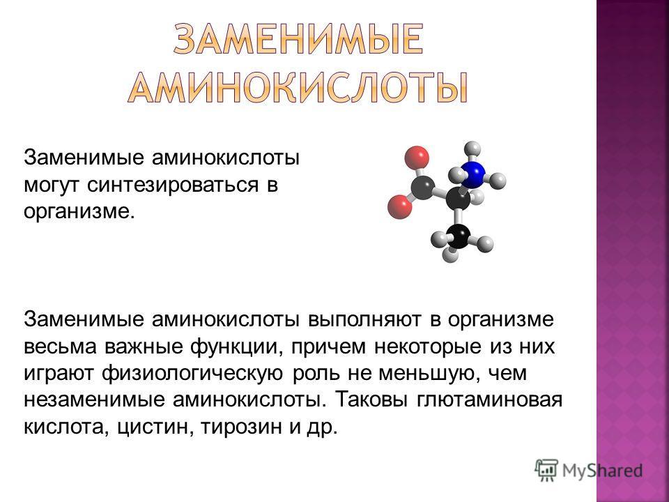 Заменимые аминокислоты могут синтезироваться в организме. Заменимые аминокислоты выполняют в организме весьма важные функции, причем некоторые из них играют физиологическую роль не меньшую, чем незаменимые аминокислоты. Таковы глютаминовая кислота, ц