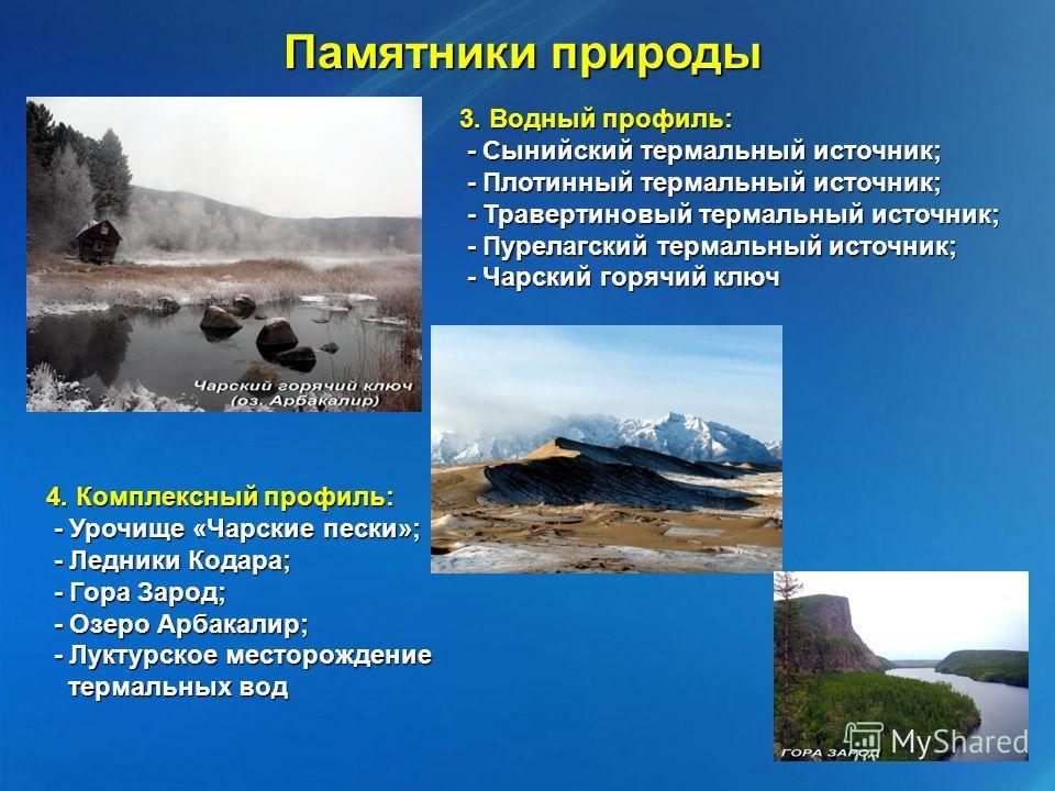 3. Водный профиль: - Сынийский термальный источник; - Сынийский термальный источник; - Плотинный термальный источник; - Плотинный термальный источник; - Травертиновый термальный источник; - Травертиновый термальный источник; - Пурелагский термальный