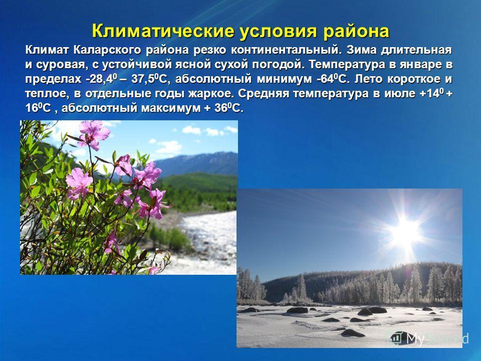 Климатические условия района Климат Каларского района резко континентальный. Зима длительная и суровая, с устойчивой ясной сухой погодой. Температура в январе в пределах -28,4 0 – 37,5 0 С, абсолютный минимум -64 0 С. Лето короткое и теплое, в отдель