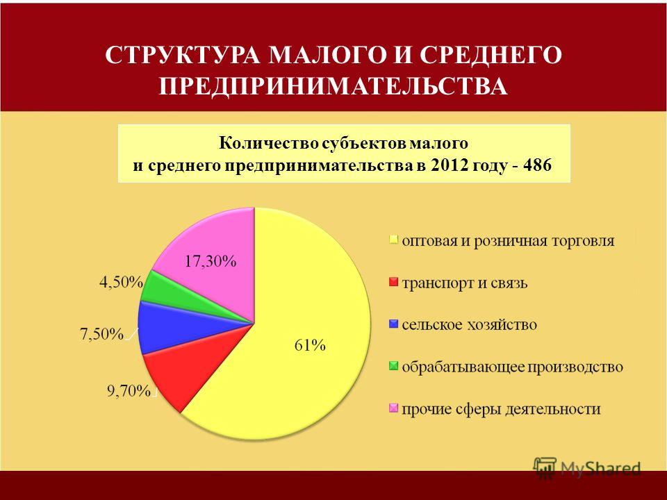 СТРУКТУРА МАЛОГО И СРЕДНЕГО ПРЕДПРИНИМАТЕЛЬСТВА Количество субъектов малого и среднего предпринимательства в 2012 году - 486