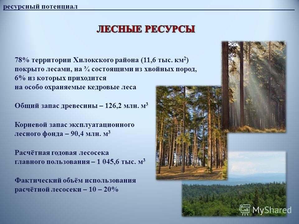 ресурсный потенциал__________________________________________________________ 78% территории Хилокского района (11,6 тыс. км 2 ) покрыто лесами, на ¾ состоящими из хвойных пород, 6% из которых приходится на особо охраняемые кедровые леса Общий запас