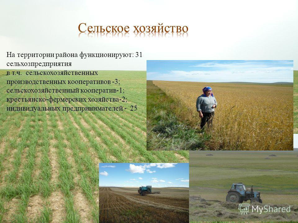- земли лесного фонда - 429,5 тыс. га; - земли сельскохозяйственных предприятий и граждан - 139,12 тыс. га; - земли водного фонда - 3,92 тыс. га; - земли населенных пунктов - 7,9 тыс. га; - земли промышленности, транспорта, связи - 0,54 тыс. га; - зе