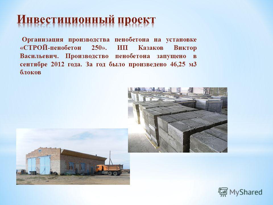 Организация производства пенобетона на установке «СТРОЙ-пенобетон 250». ИП Казаков Виктор Васильевич. Производство пенобетона запущено в сентябре 2012 года. За год было произведено 46,25 м3 блоков