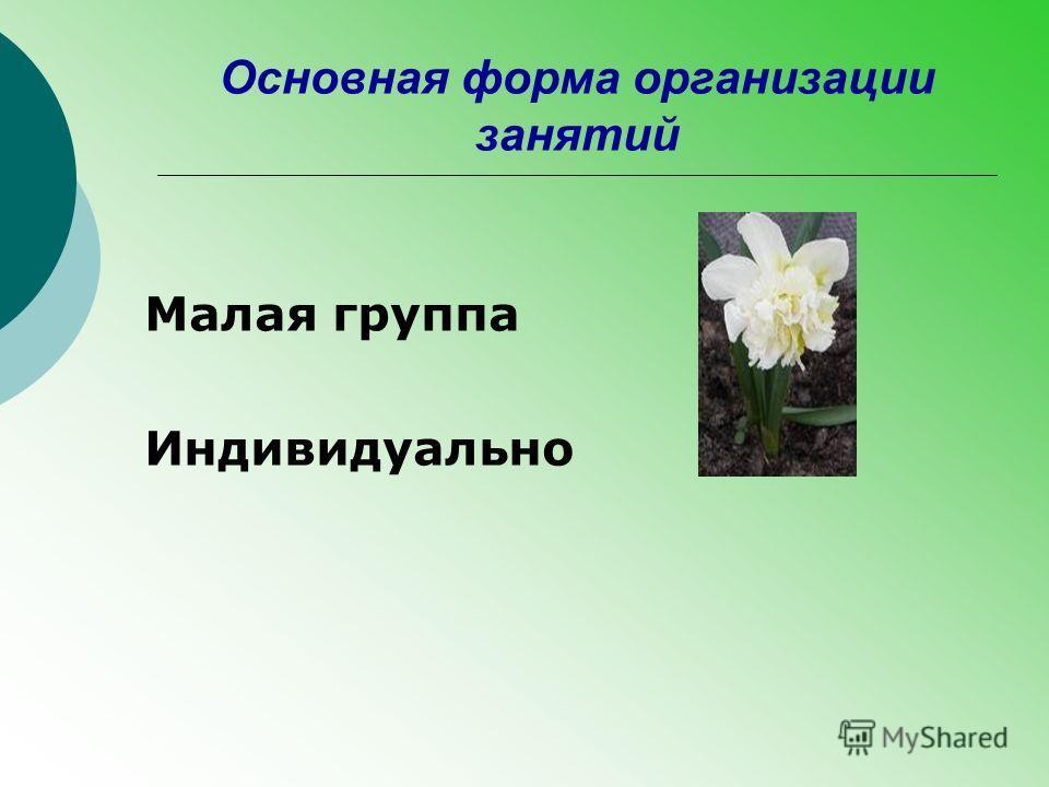 Основная форма организации занятий Малая группа Индивидуально