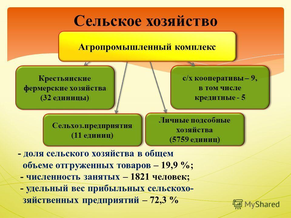 - доля сельского хозяйства в общем объеме отгруженных товаров – 19,9 %; - численность занятых – 1821 человек; - удельный вес прибыльных сельскохо- зяйственных предприятий – 72,3 % Сельское хозяйство Личные подсобные хозяйства (5759 единиц) Личные под