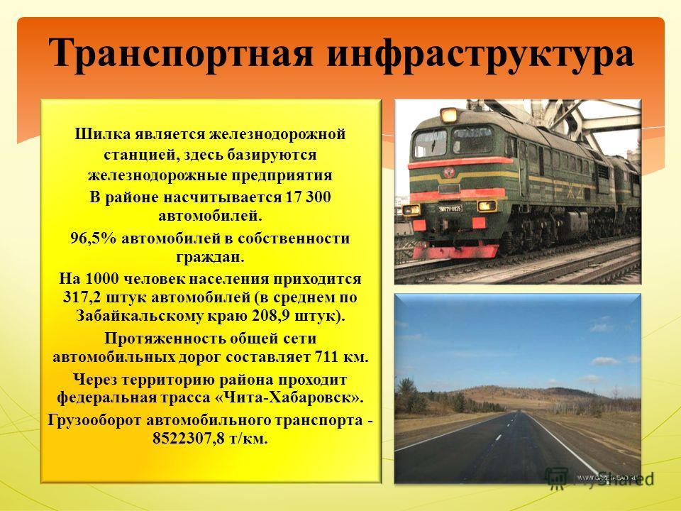 Транспортная инфраструктура Шилка является железнодорожной станцией, здесь базируются железнодорожные предприятия В районе насчитывается 17 300 автомобилей. 96,5% автомобилей в собственности граждан. На 1000 человек населения приходится 317,2 штук ав