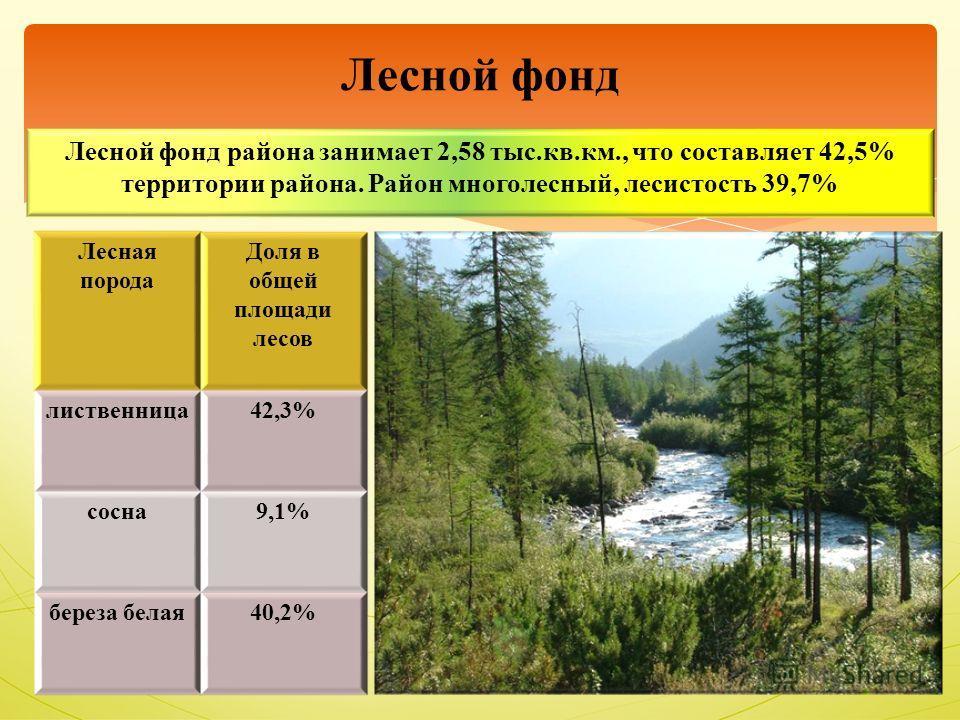 Лесной фонд района занимает 2,58 тыс.кв.км., что составляет 42,5% территории района. Район многолесный, лесистость 39,7% Лесной фонд Лесная порода Доля в общей площади лесов лиственница42,3% сосна9,1% береза белая40,2%