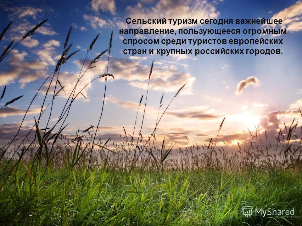 Сельский туризм сегодня важнейшее направление, пользующееся огромным спросом среди туристов европейских стран и крупных российских городов.