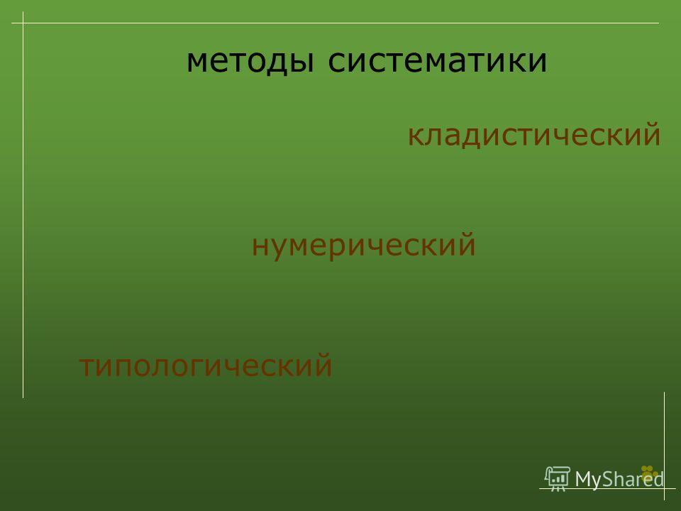 методы систематики кладистический типологический нумерический