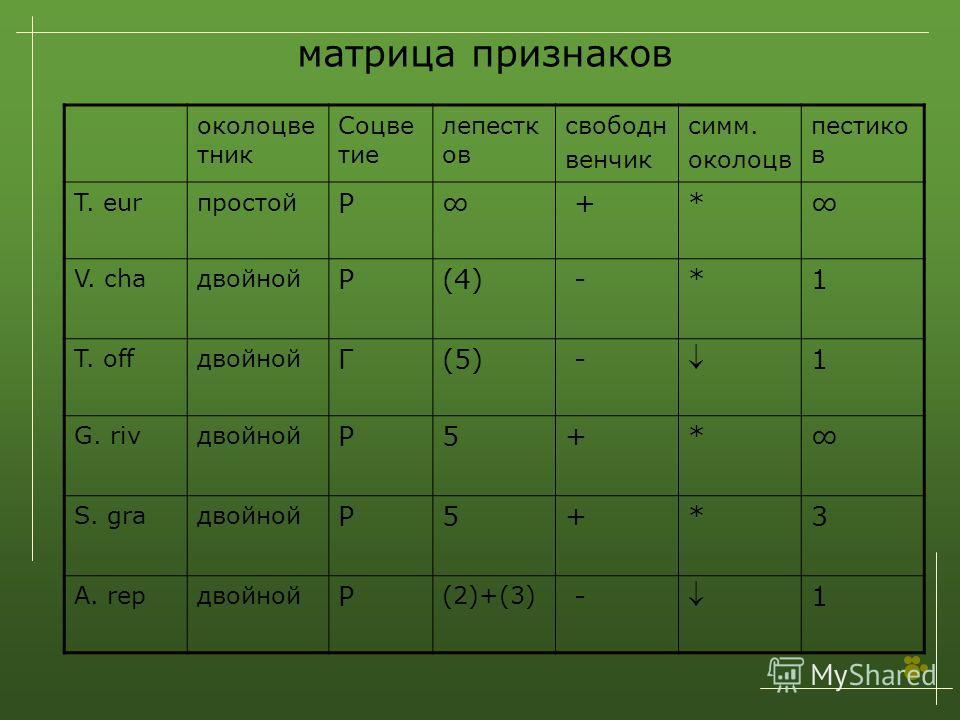 околоцве тник Соцве тие лепестк ов свободн венчик симм. околоцв пестико в T. eurпростой Р +* V. chaдвойной Р(4) -*1 T. offдвойной Г(5) - 1 G. rivдвойной Р5+* S. graдвойной Р5+*3 A. repдвойной Р (2)+(3) - 1 матрица признаков