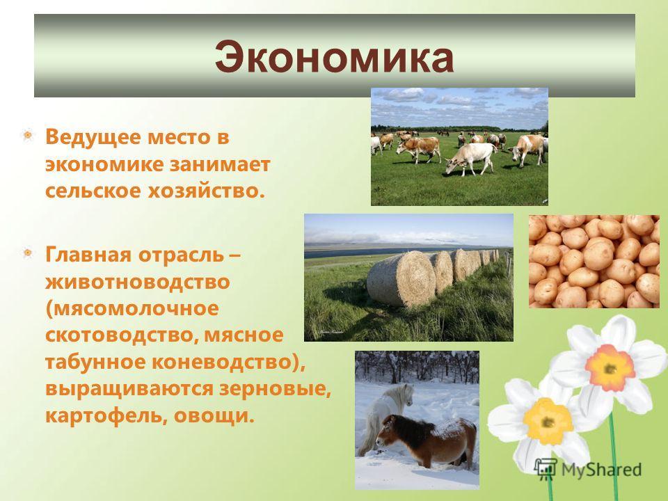 Ведущее место в экономике занимает сельское хозяйство. Главная отрасль – животноводство (мясомолочное скотоводство, мясное табунное коневодство), выращиваются зерновые, картофель, овощи. Экономика