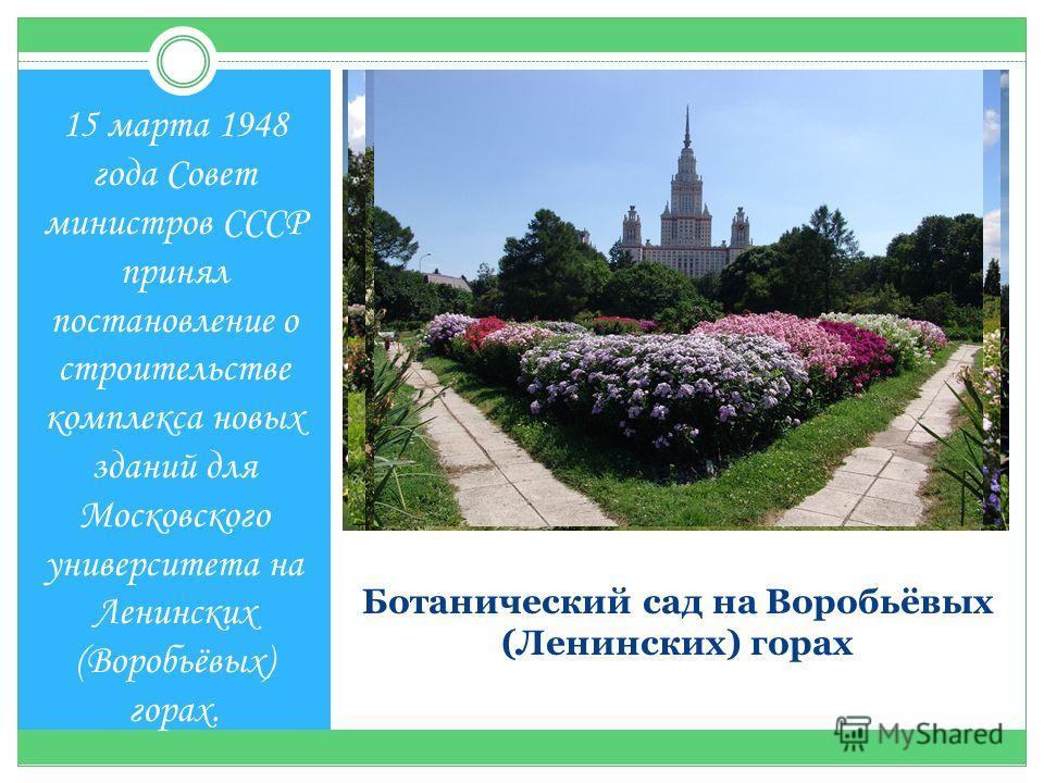 Ботанический сад на Воробьёвых (Ленинских) горах 15 марта 1948 года Совет министров СССР принял постановление о строительстве комплекса новых зданий для Московского университета на Ленинских (Воробьёвых) горах.