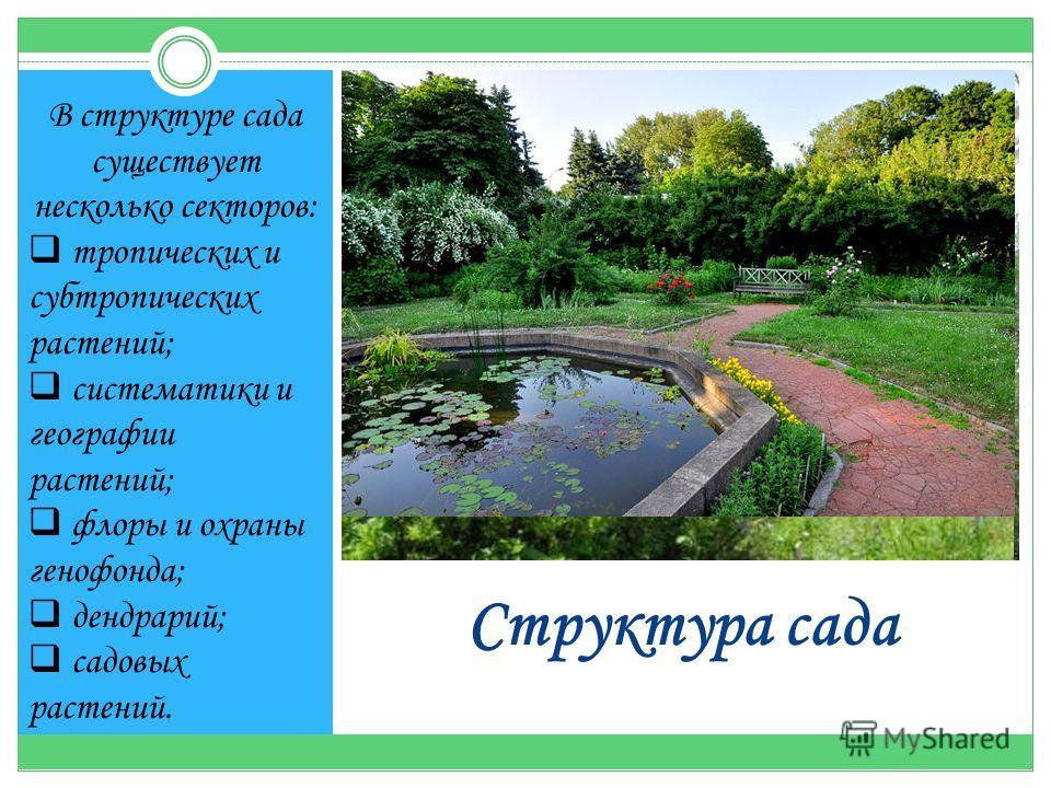 Структура сада В структуре сада существует несколько секторов: тропических и субтропических растений; систематики и географии растений; флоры и охраны генофонда; дендрарий; садовых растений.