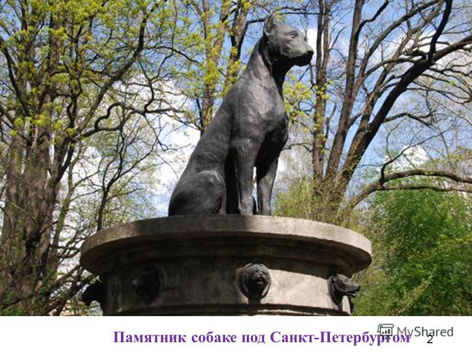 Памятник собаке под Санкт-Петербургом 2