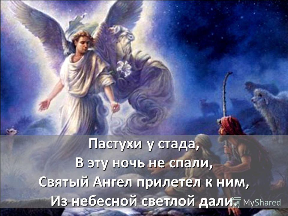 Пастухи у стада, В эту ночь не спали, Святый Ангел прилетел к ним, Из небесной светлой дали.